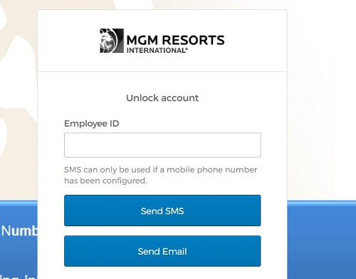 Virtual Roster Login MGM